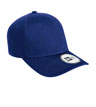 NE300 - Youth Adjustable Structured Cap